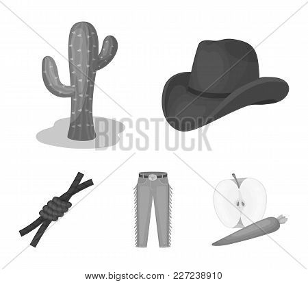 Hat, Cactus, Jeans, Knot On The Lasso. Rodeo Set Collection Icons In Monochrome Style Vector Symbol