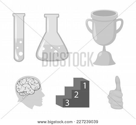 A Cup, Test Tubes With A Reagent, A Pedestal, A Man's Head With A Brain. School Set Collection Icons