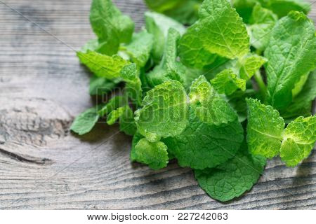 Fresh Mint Leaves On A Wooden Table, Horizontal, Copy Space