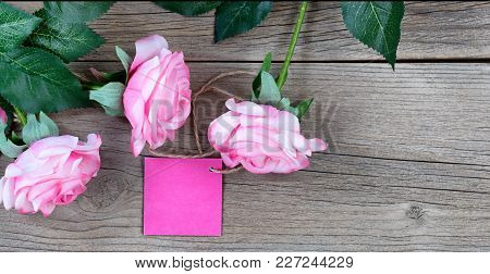Pink Roses With Gift Tag On Weathered Wooden Boards