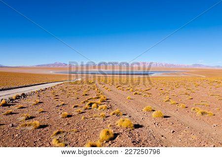 Bolivian Lagoon View,bolivia. Kollpa Kkota Lagoon View. Collpa Laguna