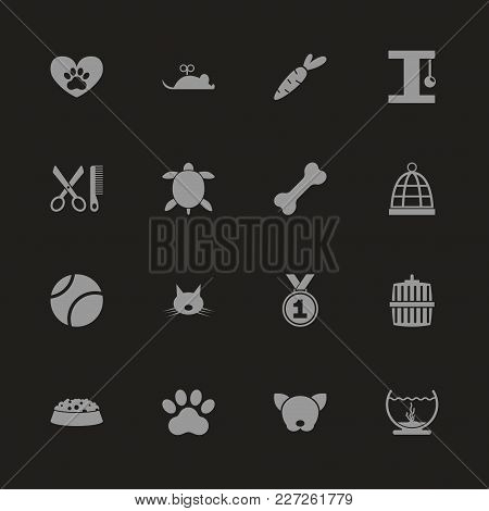 Pet Icons - Gray Symbol On Black Background. Simple Illustration. Flat Vector Icon.