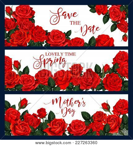 Vector Banner With Red Roses Frame. Three Vector Banners With Red Roses. Floral Frame For Greeting C