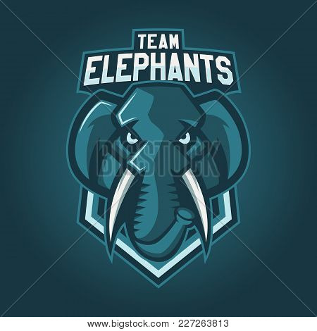 Modern Professional Logo For Sport Team. Elephant Mascot. Elephants, Vector Symbol On A Dark Backgro