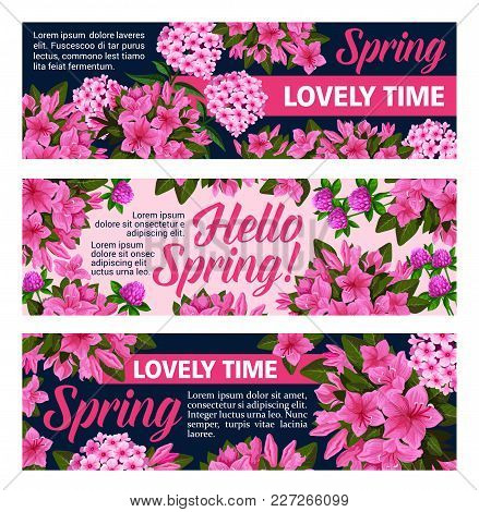 Hello Spring Banners Of Blooming Spring Flowers Bunch For Seasonal Holiday Greeting Card Wish. Vecto
