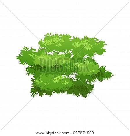 Cartoon Bush Illustration. Summer Or Spring Seasonal Image. Nature Element For Landscape Design. Eco