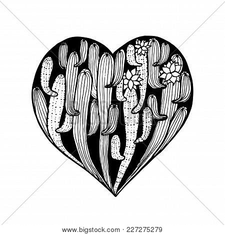 Vector Hand Dawn Heart From Cactus. Cacti Coloring Page Book Anti Stress For Adult. Card For Valenti