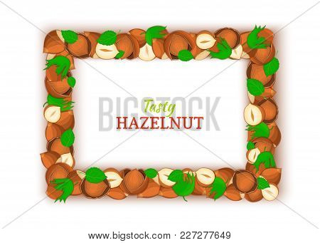 Horizontal Rectangle Colored Frame Composed Of Delicious Of Hazelnut. Vector Card Illustration. Filb