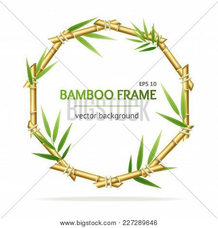 Realistic 3d Detailed Oriental Plant Bamboo Shoots Circle Frame For Promotion, Marketing And Adverti