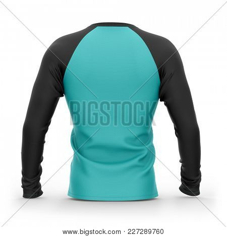 Men's blue t shirt with long black raglan sleeves. Back view.3d rendering. Isolated on white background. Clipping paths included: whole object, collar, sleeves.