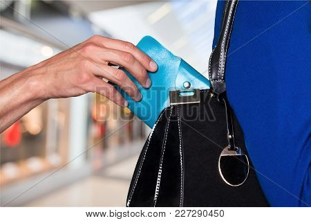 Bag Hand Wallet Steal Money Isolated Carrying