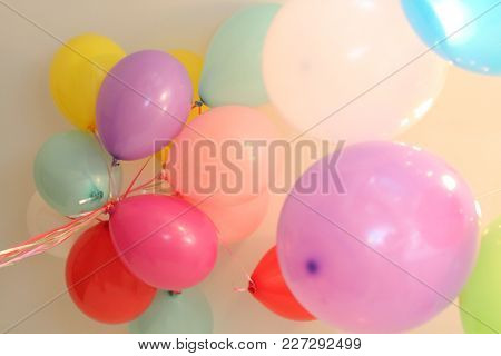 Balloons With Helium Color Different Celebration Flew Up To The Ceiling