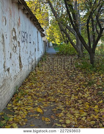 Empty Sidewalk With Fallen Leaves At Autumn