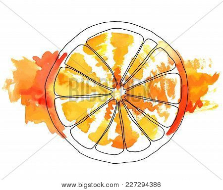 A Vector And Watercolor Drawing Of An Orange With Painterly Brush Strokes And Splashes, Hand Painted