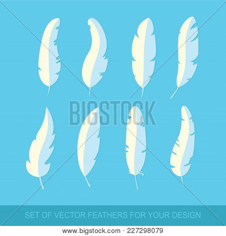 Different Set Feather Vector Icon Isolated On Blue Background. Collection For Writing Text And Desig