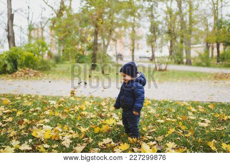 Little Cute Child Baby Boy Walk In Fall Park, Have Fun, Toss Throw Up Dry Yellow Autumn Leaves. Smal