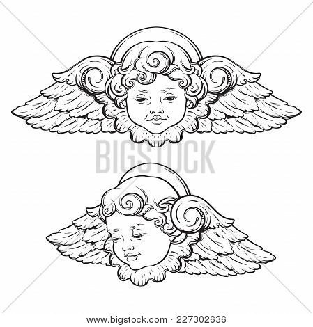 Cherub Cute Winged Vector Photo Free Trial Bigstock