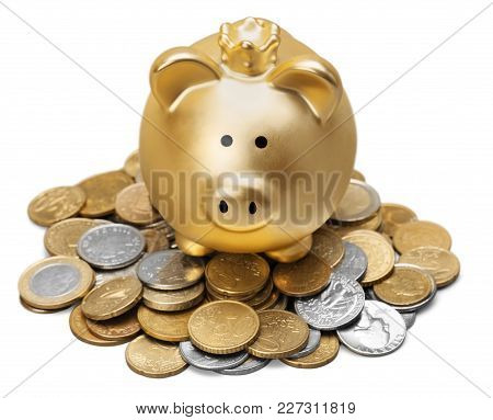 Bank Pig Coins Piggy White Background Money