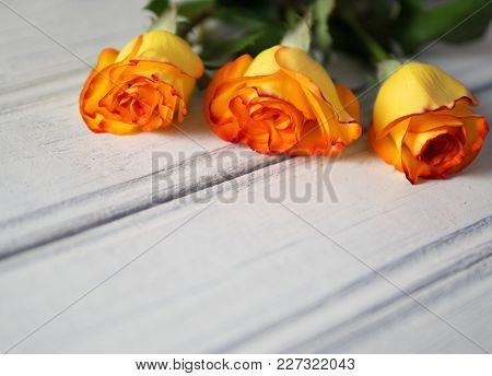 Roses On A White Wooden Table. Gift For Women's Day Or Mother