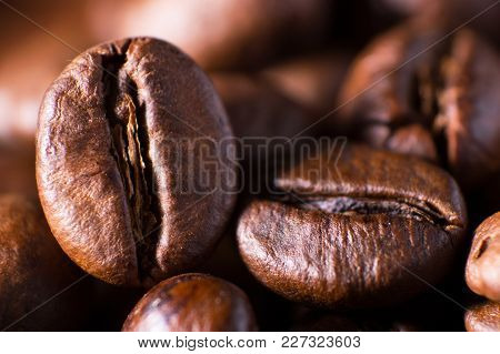 Closeup Macro A Group Roasted Brown Or Black Coffee Grains Abstract Background