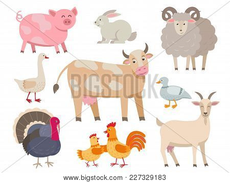 Farm Animals Vector Flat Collection Isolated On White Background. Set Of Animals Includes Cow, Pig,