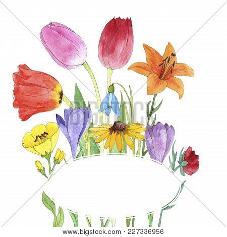 Template With Watercolor Drawing Flowers, Painted Botanical Illustration, Color Floral Background, H