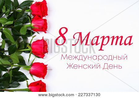 Text In Russian: March 8, International Women's Day. Roses On A White Background.