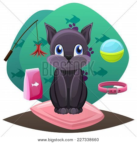 Pet Shop Concept. Animal Grooming Salon Illustration.cat Sitting On A Pillow With Toys, Balls And Fo