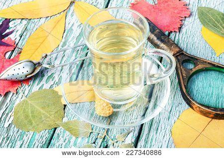 Autumn Composition With Autumnal Tea
