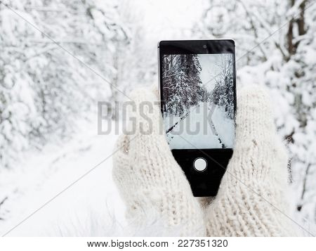 Girl Is Holding A Mobile Phone In Woolen Mittens In The Winter Against A Background Of Trees In The