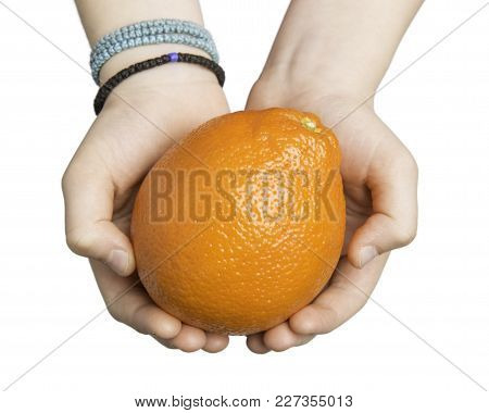 Close Up Of Child Hands Holding An Orange Isolated On White With Clipping Path At All Sizes.