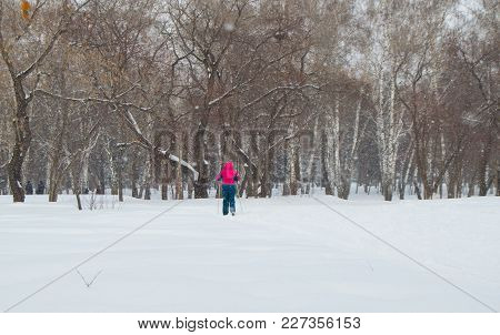 Man In Red Jacket Cross Country Skiing In Winter Park, The View From Back