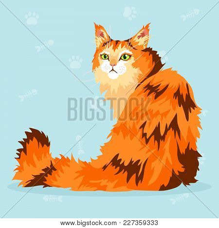 Beautiful Maine Coon With Orange, Red And Brown Fur And Green Eyes Sitting. Vector Illustration.
