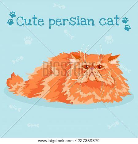 Persian Cute Cat. Vector Illustration. Cartoon Character