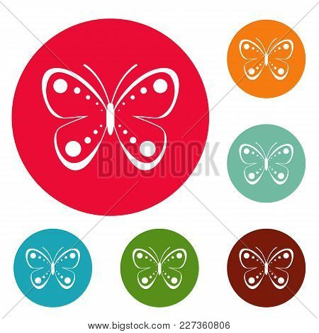 Wild Butterfly Icons Circle Set Vector Isolated On White Background