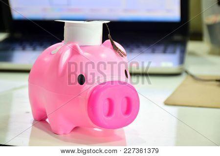 Dolls, Piggy Bank, Pink Piggy Bank, Saving