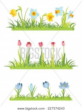 Set Of Spring April Flowery Borders For Easter Decoration, Grass And Narcissus Border, Tulips Frame,