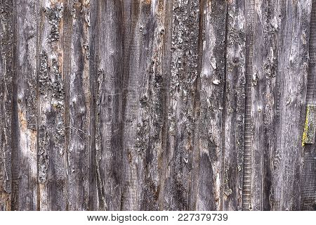 Texture Of Old Wooden Wall Of The Garage