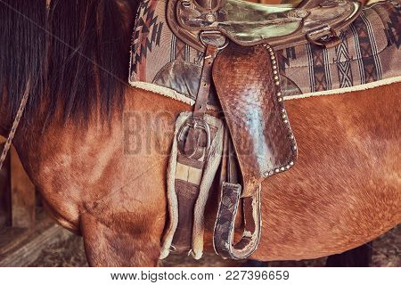 Brown Horse In A Saddle With Long Mane Standing Inside.