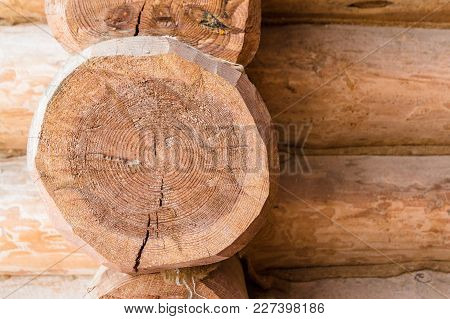 Cutted Off Log In The Wooden Structure Of The Building. Closeup Texture, Wooden Pattern With Copy Sp