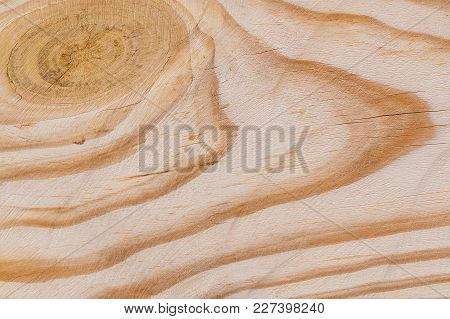 Wooden Texture Board Eco Background. Close-up, Macro Surface