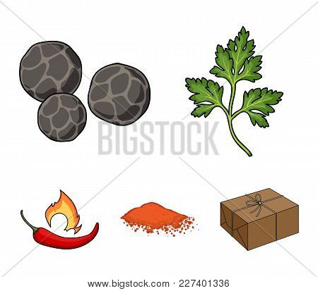 Ptrushka, Black Pepper, Paprika, Chili.herbs And Spices Set Collection Icons In Cartoon Style Vector