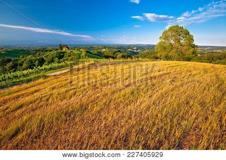 Green Landscape Of Medjimurje Region View From Hill, Northern Croatia