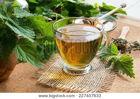 A Cup Of Nettle Tea With Fresh And Dried Stinging Nettles In The Background