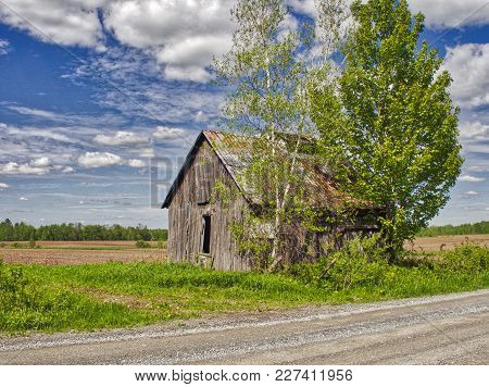 This Barn Is In A Country Road Near My Home. I Hope She Has Seen Better Days. Photo Taken In Summer
