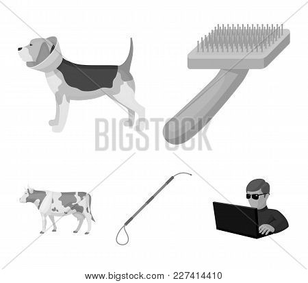 Dog, Cow, Cattle, Pet .vet Clinic Set Collection Icons In Monochrome Style Vector Symbol Stock Illus