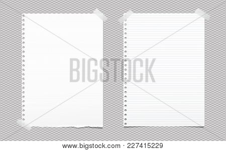 Torn Blank And Lined White Note, Notebook Paper Sheet For Text Stuck With Gray Sticky Tape On Square
