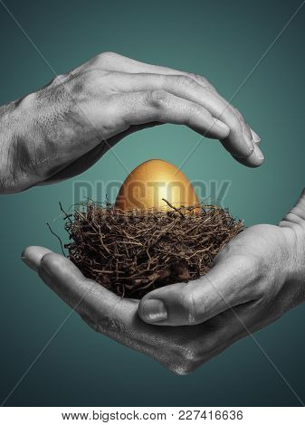 Female Hands Carefully Hold The Nest With A Golden Egg. The Concept Of Saving And Increasing Savings