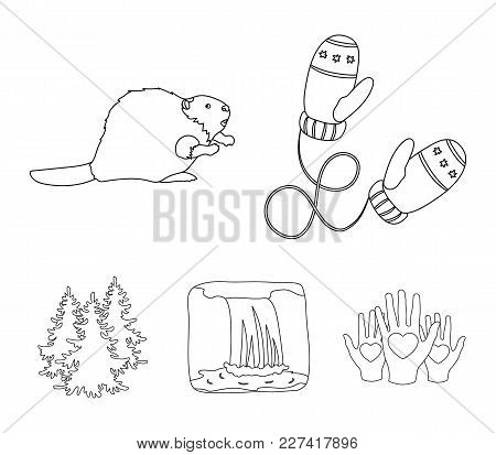 Canadian Fir, Beaver And Other Symbols Of Canada.canada Set Collection Icons In Outline Style Vector
