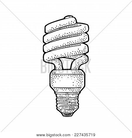 Energy Saving Spiral Cfl Lamp. Vector Vintage Black Engraving Illustration On White Background